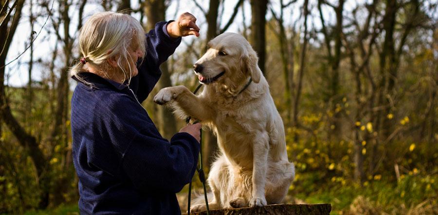 Margarete weiler beim Hundetraining.