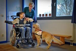 Wikkegaards Therapiehund Darjus bei der Arbeit in einer Förderschule. Foto: Veronika