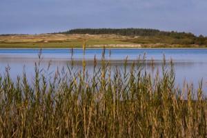 Der Nors Sø mit seinen weiten Wiesen und wäldern